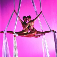 Viva Aerial Dance