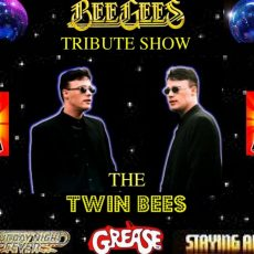 The Twin Bees